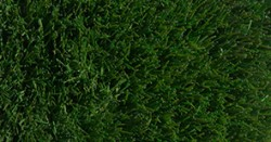 30mm pile height fake grass surface for lawns pathways and sports use. Two tone green pile with black backing